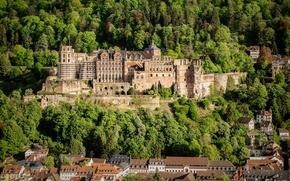 Картинка лес, деревья, замок, дома, Германия, Heidelberg Castle