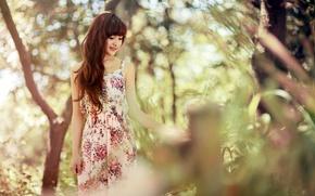 Картинка лето, девушка, природа, азиатка