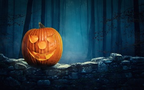 Картинка лес, ночь, Halloween Pumpkin