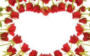 Картинка сердце, розы, красные, Red, beautiful, Roses, Heart, Valentines Day