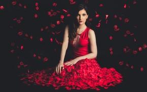 Картинка девушка, лицо, фон, красное, лепестки, платье, Marine
