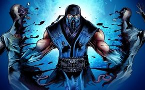 Картинка Mortal Kombat, ninja, Sub-Zero, fighting