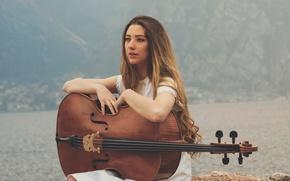 Картинка девушка, виолончель, The Lake