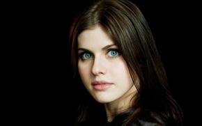 Картинка девушка, модель, актриса, брюнетка, черный фон, голубоглазая, Александра Даддарио, Alexandra Daddario