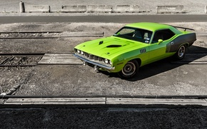 Обои 0971, Green, Barracuda, Plymouth