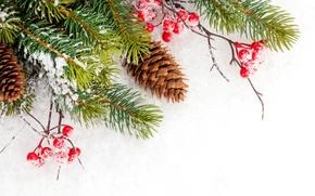 Картинка зима, снег, снежинки, елка, Christmas, шишки, winter, snow, decoration, Merry