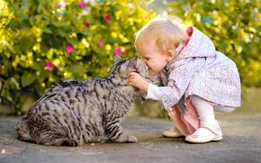 Картинка кошка, кот, радость, настроение, ситуация, поцелуй, девочка, друзья