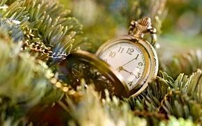 Картинка иголки, время, фон, дерево, widescreen, обои, настроения, часы, елка, цепь, wallpaper, циферблат, цепочка, широкоформатные, background, …