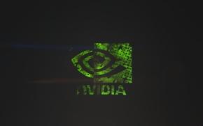 Картинка зеленый, green, черный, logo, nvidia gtx