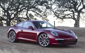 Обои небо, деревья, купе, 911, суперкар, колосья, supercar, porsche, порше, coupe, передок, бордовый, карерра с, carrera ...