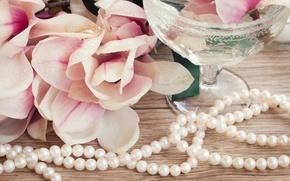 Обои цветы, flowers, магнолия, бусы, Magnolia, beads
