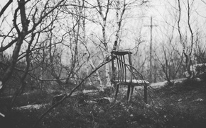 Картинка осень, лес, одиночество, настроение