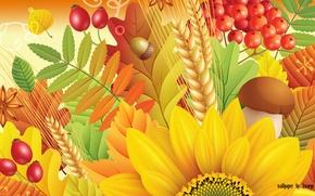 Картинка осень, листья, грибы, подсолнух, шиповник, рябина