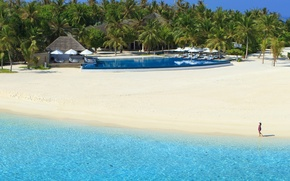 Картинка пляж, вода, девушка, прозрачность, пальмы, океан, бассейн, курорт, белый песок