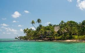 Обои тропики, море, пляж, пальмы, домик