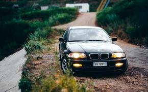 Картинка авто, bmw, бмв, E46, berdnikphoto, 318