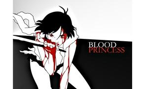 Картинка лезвие, убийца, кулак, кровавые слезы, princess, Saya Otonashi, Blood +