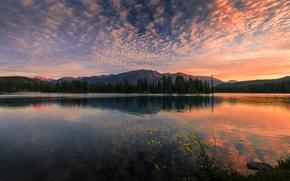 Картинка лес, закат, природа, озеро, отражение
