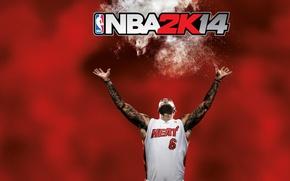 Картинка игра, баскетбол, игрок, NBA2K14