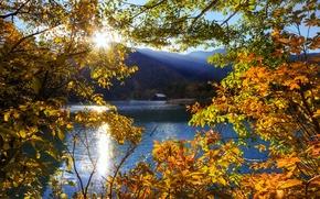 Картинка солнце, лучи, деревья, горы, озеро, Япония, Тотиги, Никко