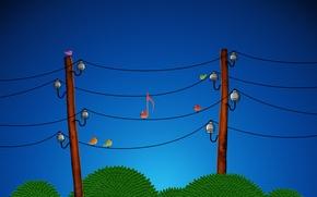 Обои птицы, провода, ноты, 153
