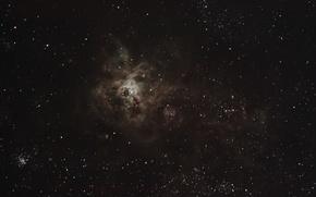 Картинка туманность, Золотая Рыба, Тарантул, в созвездии, эмиссионная