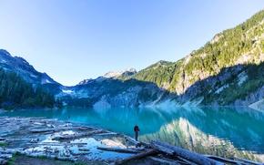 Картинка лес, деревья, горы, озеро, скалы, человек, бревна, США, коряги