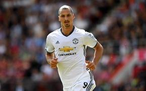Картинка звезда, star, forward, Manchester United, Манчестер Юнайтед, нападающий, striker, Златан Ибрагимович, Zlatan Ibrahimovic, бомбардир