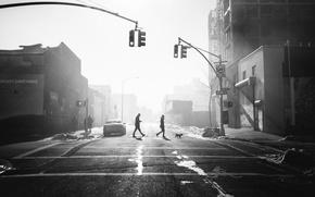 Картинка people, sunlight, cityscape, traffic light, crosswalk, crossing