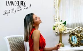 Картинка девушка, цветы, модель, букет, платье, зеркало, ремейк, песня, обложка, клип, видео, Lana Del Rey, ремейк …
