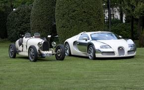 Обои белый, veyron, Bugatti