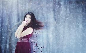 Картинка girl, dress, winter, hair, snowing