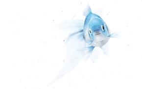 Картинка отражение, рендеринг, минимализм, золотая рыбка, нежно, голубая