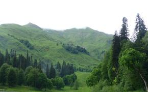 Картинка природа, холмы, Апсны:душа среди гор, Колхида