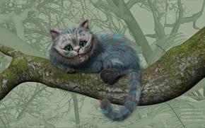 Обои в стране чудес, алиса, чеширский кот