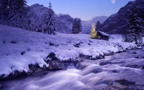 Картинка зима, снег, река, елка