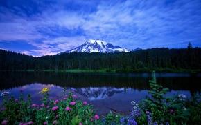 Обои небо, трава, облака, пейзаж, цветы, горы, природа, озеро