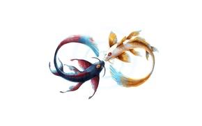Картинка рыбка, арт, инь, янь, бесконечность