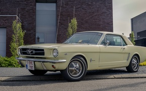 Картинка Mustang, Ford, old, 1964