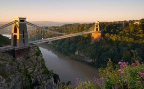 Картинка цветы, мост, река, Англия, панорама, England, Bristol, Бристоль, река Эйвон, Avon Gorge, Clifton Suspension Bridge, …