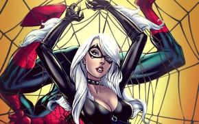 Картинка девушка, фантастика, герой, костюм, marvel, Spider-Man, black cat, Felicia Hardy, воровка