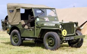 """Картинка трава, войны, автомобиль, пулемёт, армейский, ручной, 1944, Jeep, повышенной, проходимости, мировой, Второй, времён, """"Виллис-МВ"""", Willys …"""