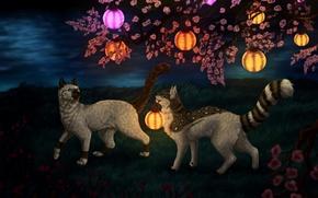 Картинка кошки, ночь, природа, фэнтези, фонарики, цветущая вишня, by Vialir