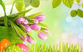Картинка трава, листья, цветы, весна, Пасха, тюльпаны, яиц, Easter