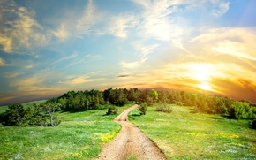 Картинка солнце, дорога, деревья, облака