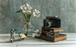 Картинка цветы, текстура, камера, компас