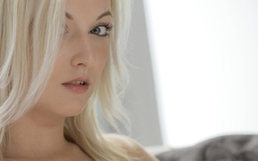 Картинка взгляд, девушка, лицо, модель, блондинка, Kim