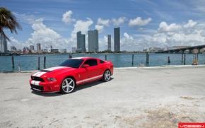 Картинка машина, авто, GT500, ford, shelby, форд, cobra