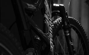 Картинка Велосипед, Tribal, Чёрнобелое