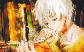 Картинка взгляд, улыбка, книга, парень, art, Шион, шестая зона, No. 6, Sion